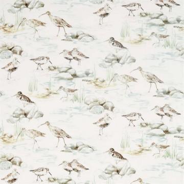 DEBB226426 ESTUARY BIRDS
