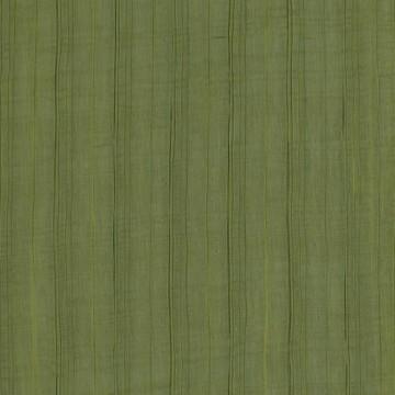 Aralia V3373-01