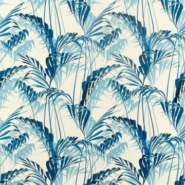 Palm House 226569