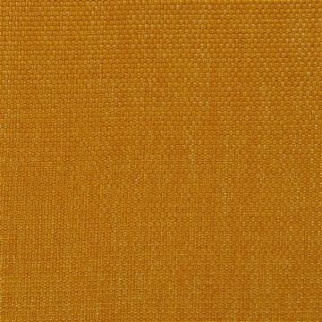 Salt Marsh Maize FRL5131-03